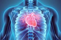 Héritas Cardiomiopatías Hereditarias